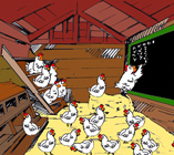 Chicken_parliament